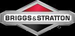 Briggs & Stratton client logo